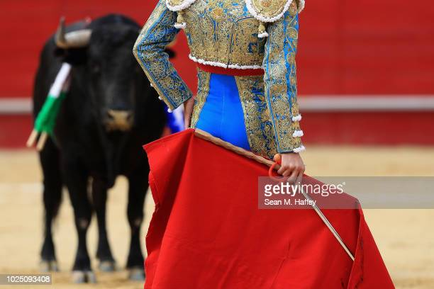 Torero Arturo Macias of Mexico addresses a bull during the final stage of a bullfight at Caliente Plaza de Toros on July 8 2018 in Tijuana Mexico...