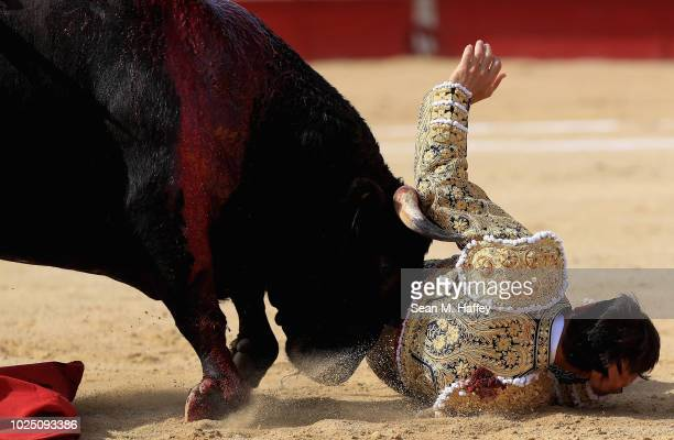 Torero Jose Mauricio of Mexico falls and is hit by a raging bull during the second stage of a bullfight at Caliente Plaza de Toros on July 8 2018 in...