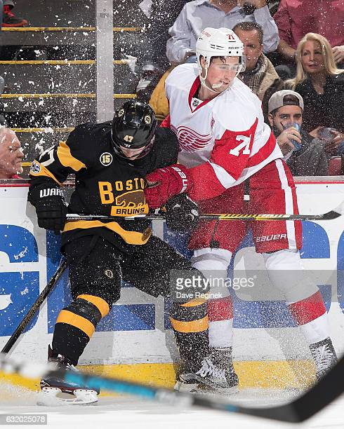 Torey Krug of the Boston Bruins battles along the boards for the puck with Dylan Larkin of the Detroit Red Wings during an NHL game at Joe Louis...