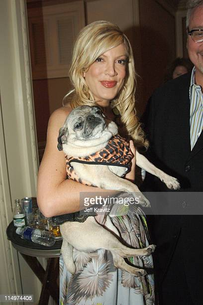Tori Spelling during 2006 TCA MTV Networks Green Room at Ritz Carlton Hotel Pavilion Room in Pasadena California United States
