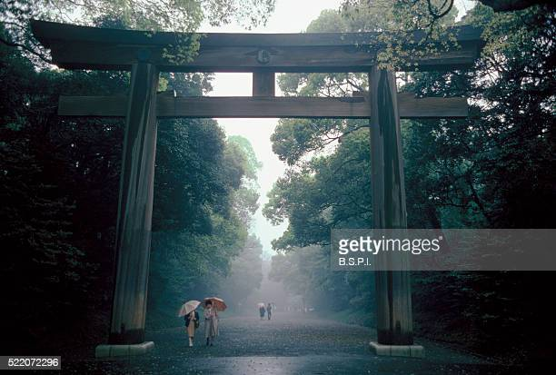 Torii Gate at Meiji Shrine