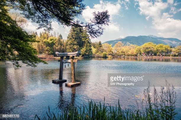 torii gate in lake kinrin-ko - 大分県 ストックフォトと画像
