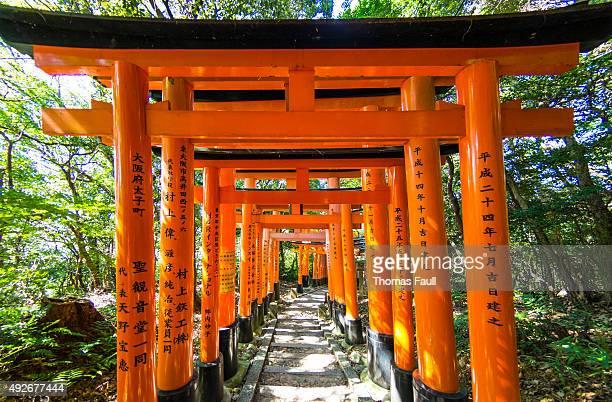 Torii Gates at Fushimi Inari-taisha