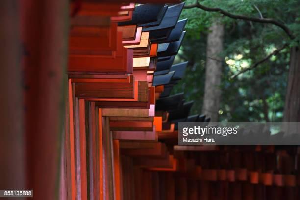 Torii gates of Fushimi Inari Taisha Shrine on October 1 2017 in Kyoto Japan
