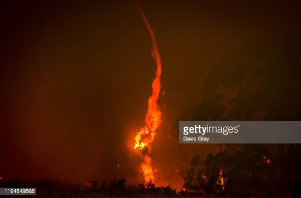 A tornado inside a bushfire burns near homes on the outskirts of the town of Bilpin on December 19 2019 in Sydney Australia NSW Premier Gladys...