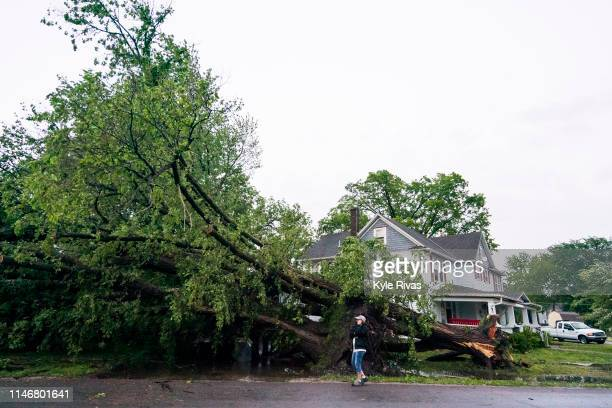 A tornado toppled a tree onto a semi truck on May 28 2019 in Linwood Kansas The Midwest has seen extensive severe weather this spring with widespread...