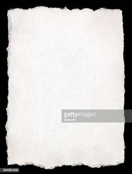 Blanc papier à bords déchirés