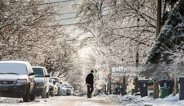 toronto after the ice storm - chilly bin stock photos and pictures