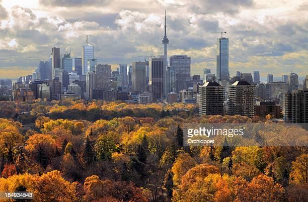 Toronto Autumn 2011