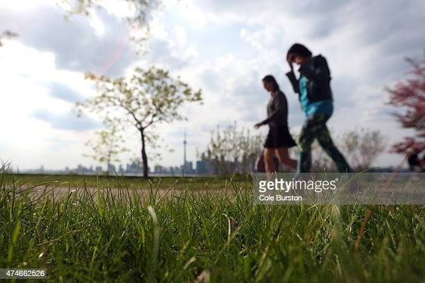 Toronto Canada May 24 People walk a path leading from Wards Island to Algonquin Islands part of the Toronto Island where black legged ticks have been...