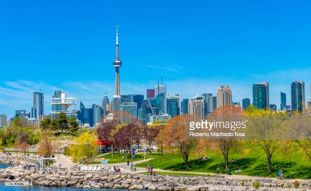 toronto canada: urban skyline including the cn tower during the daytime - toronto - fotografias e filmes do acervo