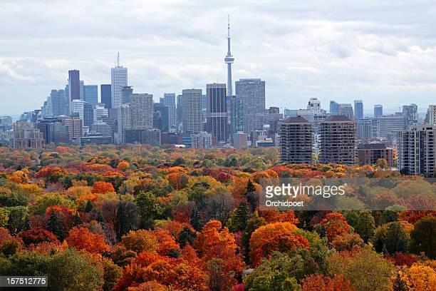 Toronto In Autumn