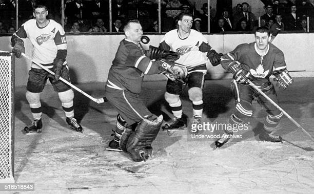 Toronto Maple Leaf goalie Johnny Bower appears to be stopping the puck with his chin in a National Hockey League game against the Detroit Red Wings...