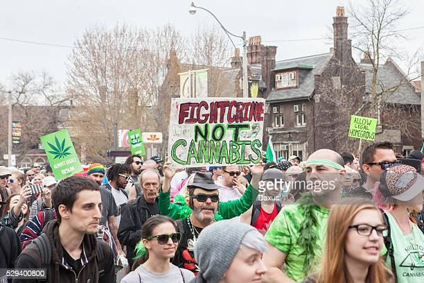 toronto marijuana march 2016 - legalization stock pictures, royalty-free photos & images