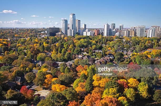 toronto midtown autumn - toronto stock pictures, royalty-free photos & images