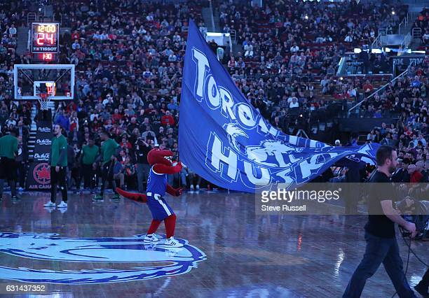 TORONTO ON JANUARY 10 Toronto Raptors mascot The Raptor waves the Toronto Huskies flag as the Toronto Raptors wearing their throw back Toronto...