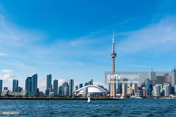 Toronto Skyline Including CN Tower During Daytime
