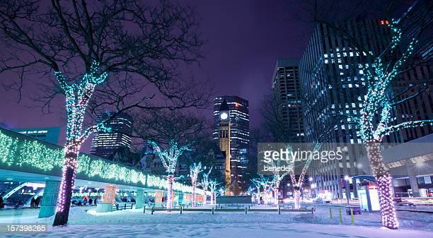 Toronto Winter Night