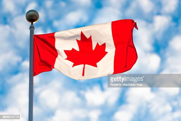 toronto,canada: canadian national flag waving on a partially cloudy sky - canadian flag stock pictures, royalty-free photos & images