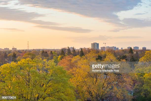 Toronto,Canada: Scarborough skyline in daytime during the Spring Season. Scarborough is one of the fastest growing cities that form the Greater Toronto Area
