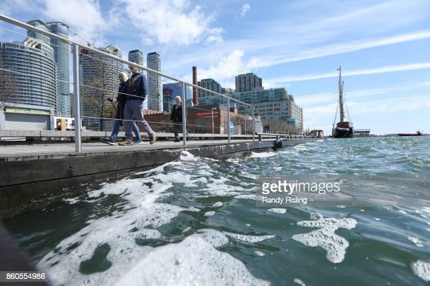 Toronto's downtown inner harbour often contains E coli bacteria well beyond public safety standards according to testing by environmental charity...