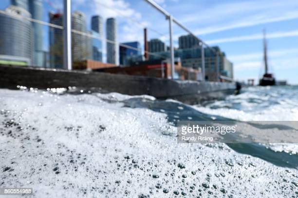 Toronto's downtown inner harbour often contains E. Coli bacteria well beyond public safety standards, according to testing by environmental charity...