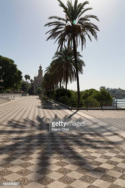 Torre del Oro and palm trees