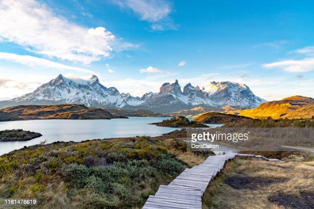 torres del paine national park, chile. (torres del paine national park) - patagonia foto e immagini stock