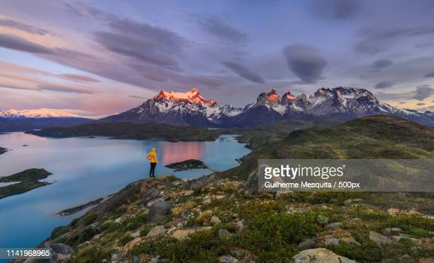 torres del paine national park during sunrise, patagonia, chile - patagonia foto e immagini stock