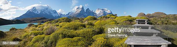 torres del paine national park, patagonia, chile - torres del paine national park stock photos and pictures