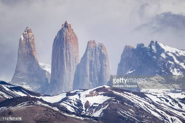 torres del paine seen from laguna azul - pinnacle stock pictures, royalty-free photos & images