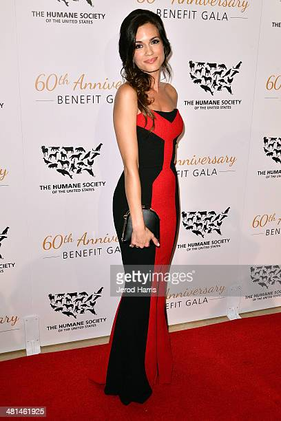Torrey DeVitto attends the Humane Society of the United States 60th Anniversary Benefit Gala at The Beverly Hilton Hotel on March 29 2014 in Beverly...