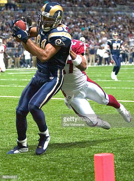 Torry Holt of the St Louis Rams hauls in a touchdown pass against David Macklin of the Arizona Cardinals at the Edward Jones Dome November 20 2005 in...