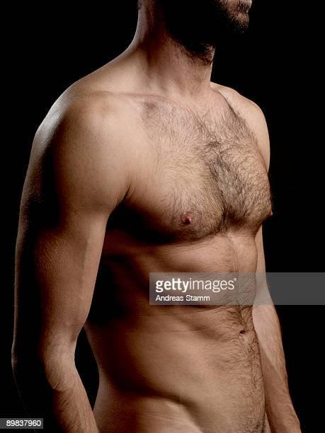 torso of a shirtless man - behaart stock-fotos und bilder