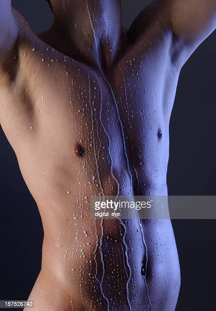 torso of a young muscular man - male belly button stock photos and pictures