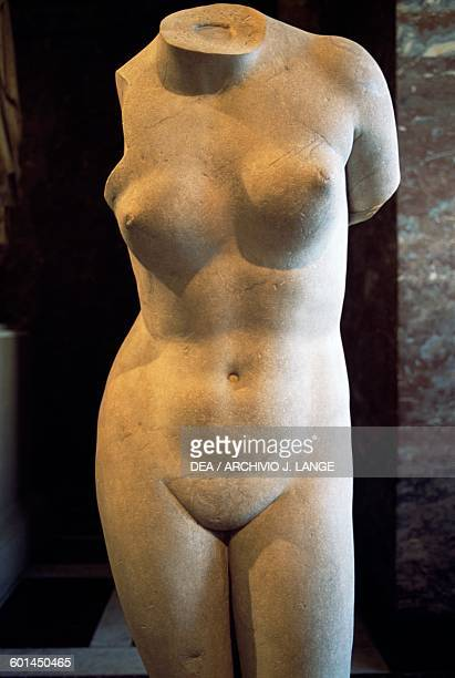 Torso of the Aphrodite of Knidos type Roman copy after the Greek statue by Praxiteles 4th century BC marble Roman civilisation 2nd century AD Detail...