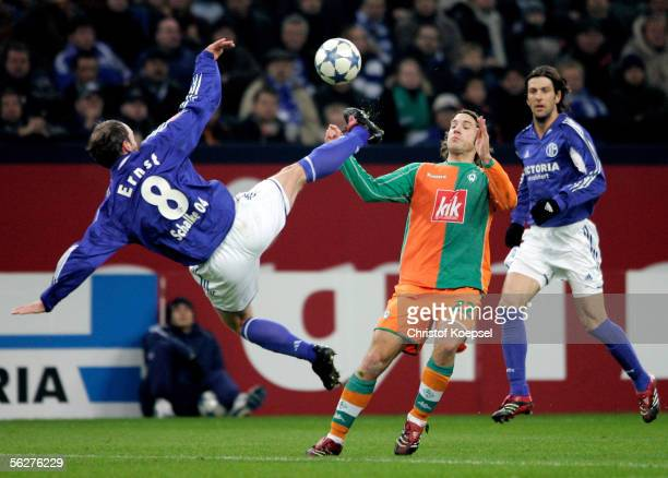 Torsten Frings of Bremen tackles Fabian Ernst of Schalke during the Bundesliga match between Schalke 04 and Werder Bremen at the Arena Auf Schalke on...