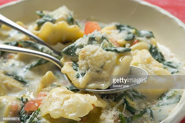 Tortellini with spinach and cream sauce and Parmesan