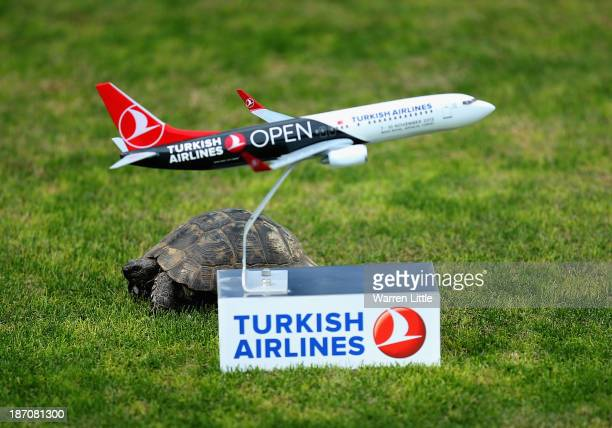 A tortoise passes a tee marker during the proam as a preview for the Turkish Airlines Open at Montgomerie Maxx Royal Course on November 6 2013 in...