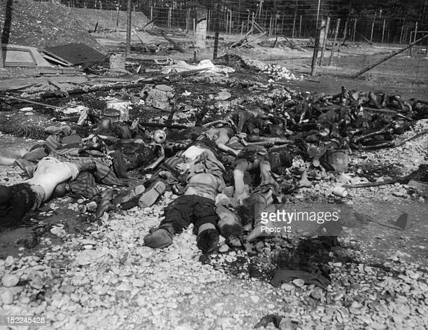 Tortured starved and charred bodies of prisoners victims of German atrocities lie in Stalag 4 of Landberg concentration camp April 29 1945 after its...
