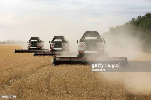Torum combine harvesters manufactured by Rostselmash OJSC drive through a field of wheat during the summer harvest on a farm operated by Ros Agro Plc...