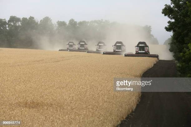 Torum combine harvesters manufactured by Rostselmash OJSC drive in formation through a field of wheat during the summer harvest on a farm operated by...
