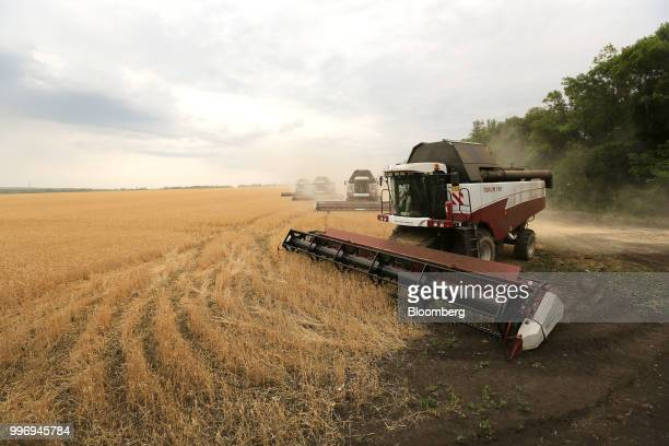Torum combine harvesters manufactured by Rostselmash OJSC prepare to turn as they drive through a field of wheat during the summer harvest on a farm...