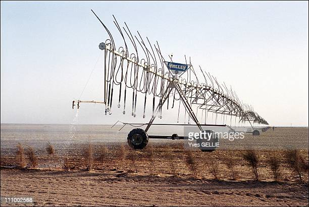 Toshka dam Egypt creates a second Nile Valley in Egypt in July 2004 Kadko farm An automatic watering mechanism turns in circles on the parcel of...