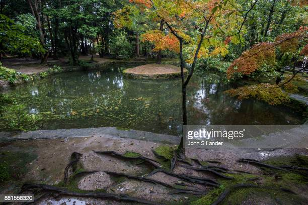 Toshodaiji Pond Garden Toshodaiji was founded by Ganjin a Chinese priest invited to Japan by the emperor to train priests and teach Buddhism Ganjin's...