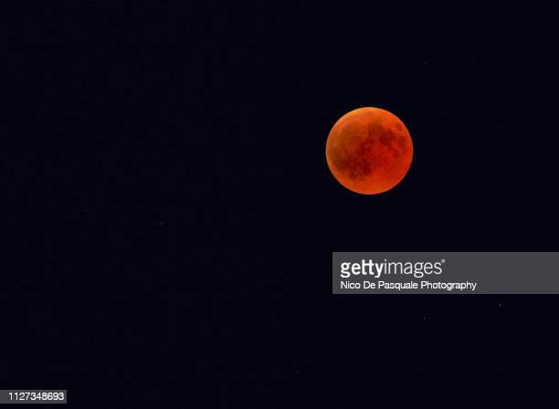 total lunar eclipse - harvest moon stock pictures, royalty-free photos & images