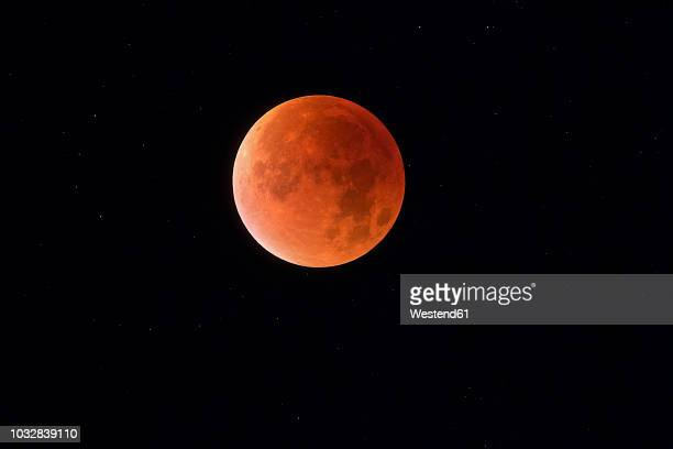 total lunar eclipse with stars in background, blood moon - high contrast stock pictures, royalty-free photos & images