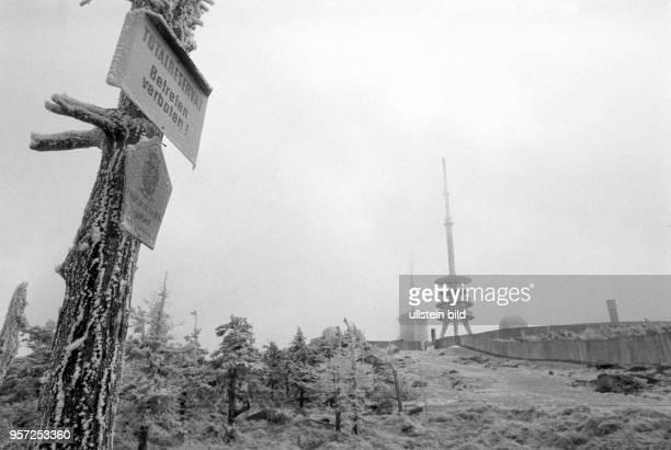 'Totalreservat Betreten verboten' steht auf einer Naturschutztafel an einem Baum im Harz am Brocken auf der anderen Bildseite umzäunt eine Mauer ein...