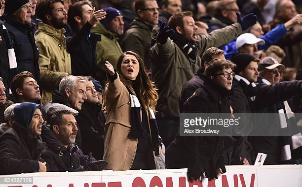 Tottenham Hotspur fans react during the Premier League match between Tottenham Hotspur and West Ham United at White Hart Lane on November 19 2016 in...