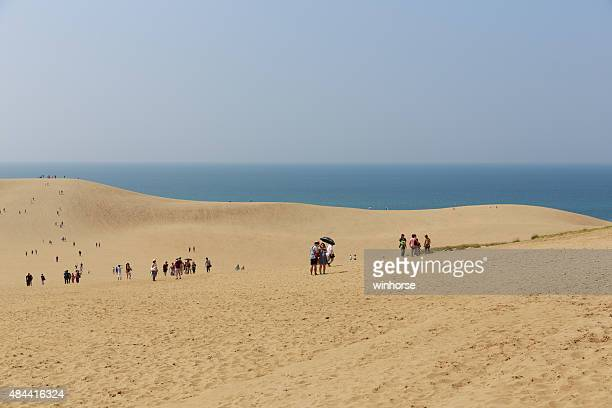 tottori sand dunes in japan - tottori prefecture stock photos and pictures